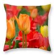 Garden Torches Throw Pillow