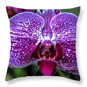 Garden View Series 24 Throw Pillow