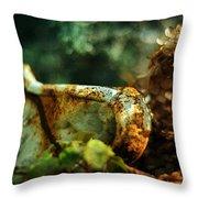 Garden Vintage Throw Pillow