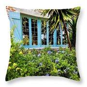 Garden Window Db Throw Pillow