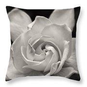 Gardenia Bloom In Sepia Throw Pillow
