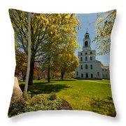 Gardens Of The First Parish Throw Pillow