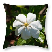 Gardinia At Twilight 1 Throw Pillow