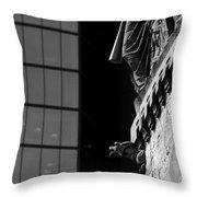 Gargoyle And Glass Throw Pillow