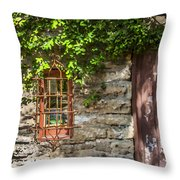 Gate And Window Throw Pillow