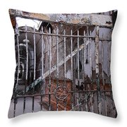 Gate To The Infirmary Throw Pillow