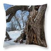 Gateway To The River Bottoms Throw Pillow