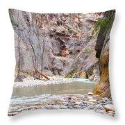 Gateway To The Zion Narrows Throw Pillow