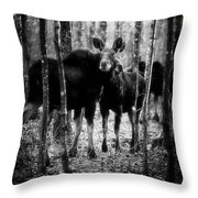 Gathering Of Moose Throw Pillow by Bob Orsillo