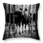 Gathering Of Moose Throw Pillow