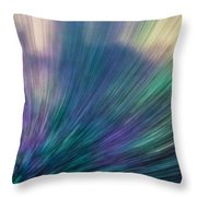 Gathering Point Throw Pillow