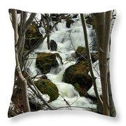 Gathering Strength Throw Pillow