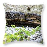 Gator Camoflage Throw Pillow