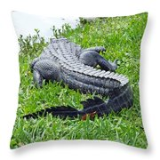 Gator In The Grass Throw Pillow