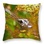 Gator On The Move Throw Pillow