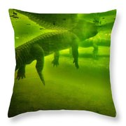 Gator Reflection Throw Pillow