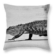 Gator Walking Throw Pillow