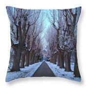Gauntlet Of Trees To Hohenheim Castle Throw Pillow