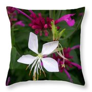 Gaura Lindheimeri Whirling Butterflies With Agastache Ava Throw Pillow