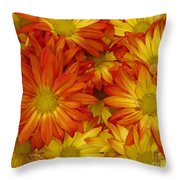 Gazania Painterly Throw Pillow