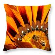 Gazania Pollination Throw Pillow