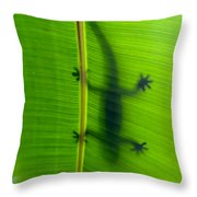 Gecko Silhouette Throw Pillow