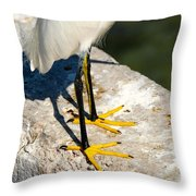 Gee Really I Hadn't Noticed Throw Pillow