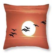 Geese Against The Sun Throw Pillow