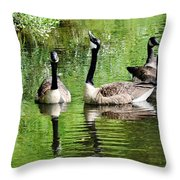 Geese And Green Throw Pillow