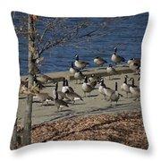 Geese At Port Landing Throw Pillow