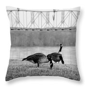 Geese By The Ohio Throw Pillow