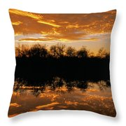 Geese Fly In The Sunset Throw Pillow