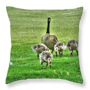 Geese Hdr Throw Pillow
