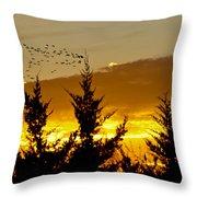 Geese In Golden Sunset Throw Pillow