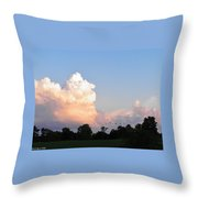 Geese In The Evening Throw Pillow
