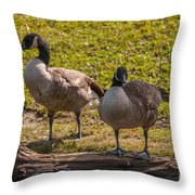 Geese On A Log Throw Pillow
