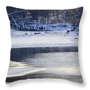 Geese On Ice Throw Pillow