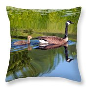 Geese Ripples Throw Pillow by Shell Ette