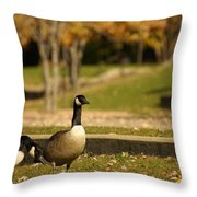 Geese Strolling In Park Throw Pillow