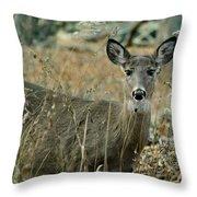 Gem In The Brush Throw Pillow