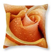 Gemini Dew Throw Pillow