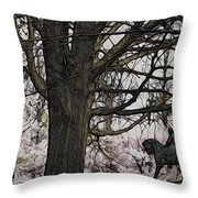 General Meade In The Cherry Blossoms Throw Pillow