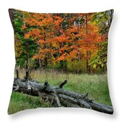 Generations Past And Present Throw Pillow