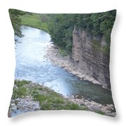 Genesee River In Grand Canyon Of East Throw Pillow