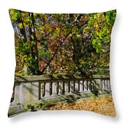 Genesee Valley Park Throw Pillow