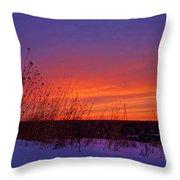 Genesis Dawn Throw Pillow
