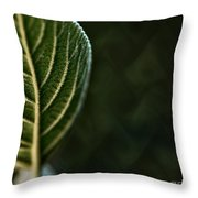 Genetic Fabric Throw Pillow