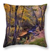 Genil River Throw Pillow