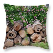 Gentle And Rough Throw Pillow