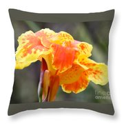 Gentle Awakening Throw Pillow
